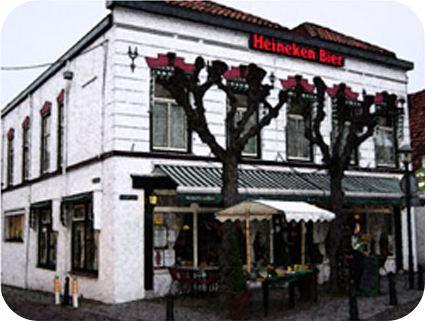 Hotel Akershoek in Ouddorp
