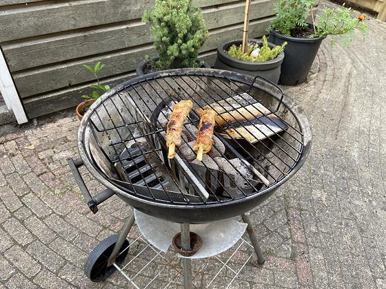 Barbecue kipspiesjes